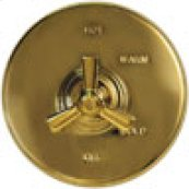 "Uncoated Polished Brass - Living 42"" Grab Bar"
