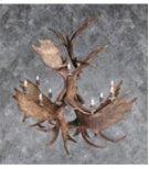 13 Light Moose Chandelier Product Image