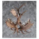 13 Light Moose Chandelier Product Image