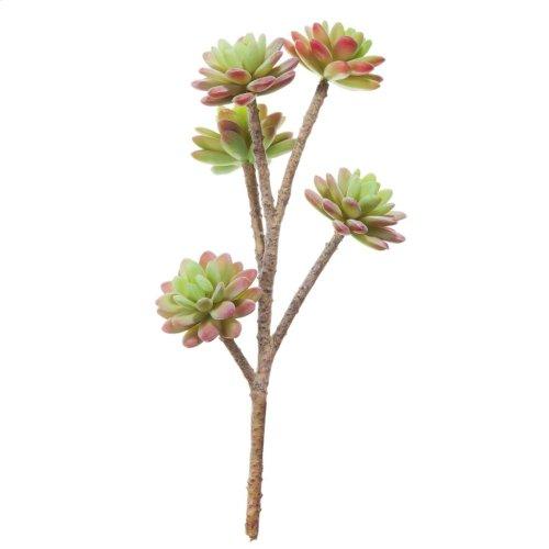 ElGreko Succulent 5 Stem