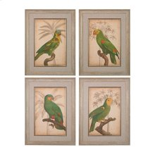 PARROT AND PALM I,II,III,IV - FINE ART GICLEE UNDER GLASS