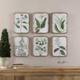 Blue Floral Collection Framed Prints
