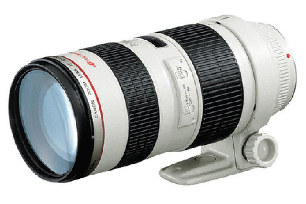 Canon EF 70-200mm f/2.8L USM Telephoto Zoom