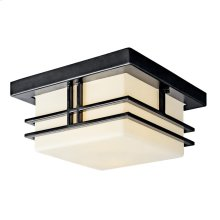 Tremillo Collection Tremillo 2 Light Fluorescent Outdoor Flush Mount