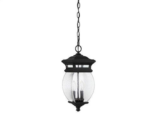 Seven Oaks 2 Light Hanging Lantern