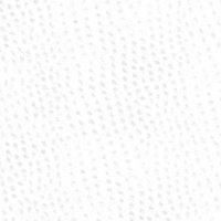 Rhino Snowflake Product Image