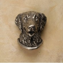 Golden Retriever Knob