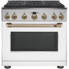Professional Gas Range with 6 Burners