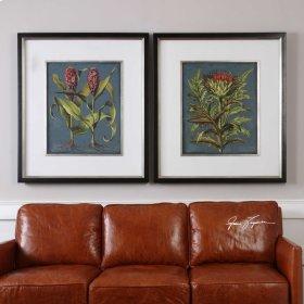 Rhubarb and Artichoke, S/2