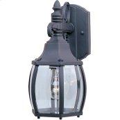Crown Hill 1-Light Outdoor Wall Lantern