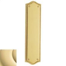 Non-Lacquered Brass Bristol Push Plate