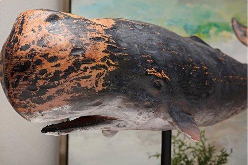 Pelagia Whale