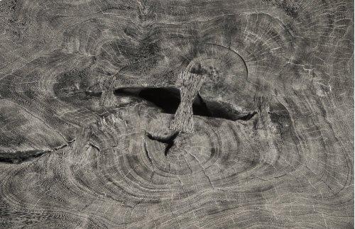 Chamcha Wood Coffee Table, Grey Stone