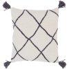 """Braith BRH-002 20"""" x 20"""" Pillow Shell Only"""