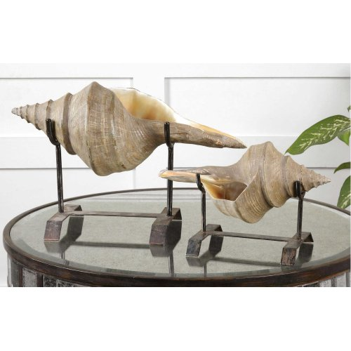 Conch Shell Sculpture, S/2