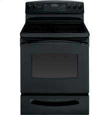 "GE Profile Series 30"" Free-Standing Convection Range"