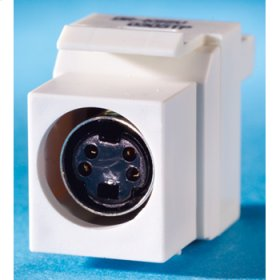 S-Video Keystone module, (4-pin DIN) to 110, Wiremold Ivory