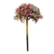 Hydrangea,Fall Pink