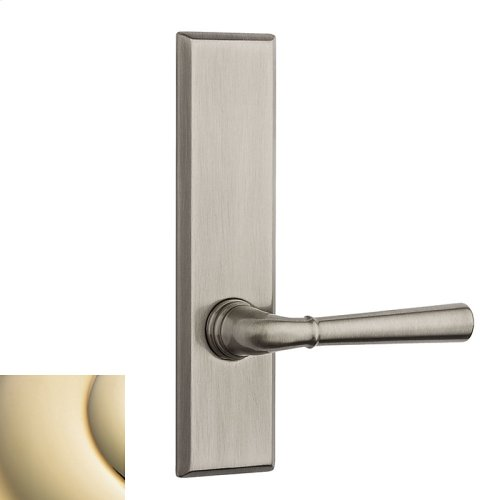 Lifetime Polished Brass Traditional L027 Lever Screen Door