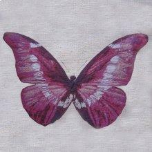 Butterfly Ruby