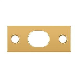 Strike Plate For Extension Flush Bolt - PVD Polished Brass