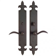 "Fleur de Lis Privacy Set - 3"" x 21"" Silicon Bronze Brushed"