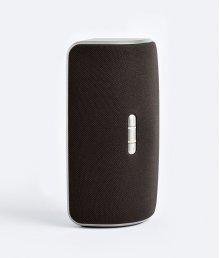 Wireless Multi Room Speaker