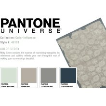 Color influence