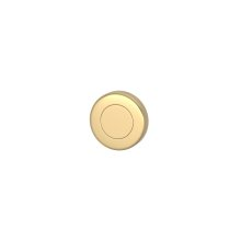 Blank Escutcheons In Polished Brass