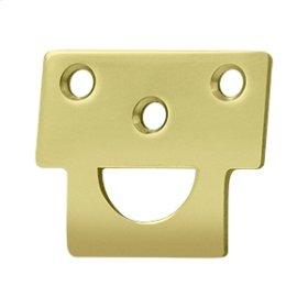 Universal Strike, Solid Brass - Polished Brass
