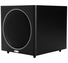 12-Inch 300W Subwoofer in Black