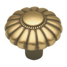 Beaded Classic Knob - Winchester Brass