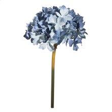 Hydrangea,Multi-Blue