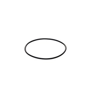 Replacement O-Ring for WFCB Water Filter -