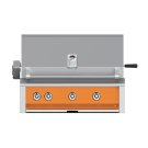 "36"" Aspire Built-In Grill with Rotisserie - E_BR Series - Citra Product Image"