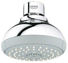Chrome Shower head IV