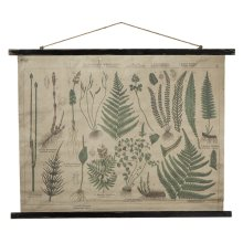 Botanical Rolled Antique Canvas Wall Decor