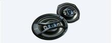 6 x 9 in (16x24 cm) 4-way Speakers