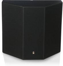 2-Way Surround Loudspeaker