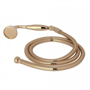 Unlacquered Brass Perrin & Rowe Inclined Handshower And Hose