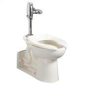 Priolo 1.1-1.6 gpf EverClean Universal Flushometer Toilet - White