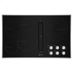 "Jenn-AirEuro-Style 36"" JX3 Electric Downdraft Cooktop"