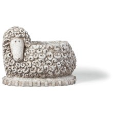 Curly Sheep Planter