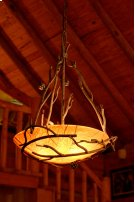 Pine Iron Globe Chandelier Product Image