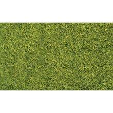 Shaggy rug, Green color