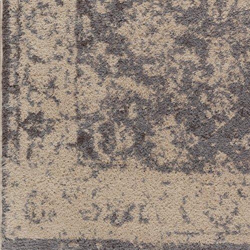 Apricity APY-1005 2' x 3'