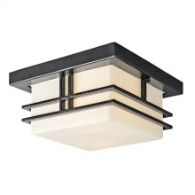 Tremillo Collection Tremillo 2 Light Outdoor Flush Mount in Black