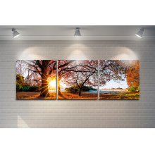 """3 Pieces Printed Art """"forest"""" Composition"""
