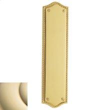 Lifetime Polished Brass Bristol Push Plate