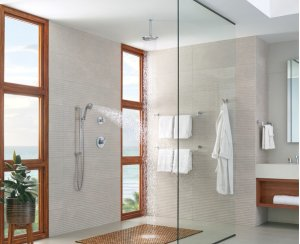 """10"""" Ceiling Mount Shower Arm and Flange"""